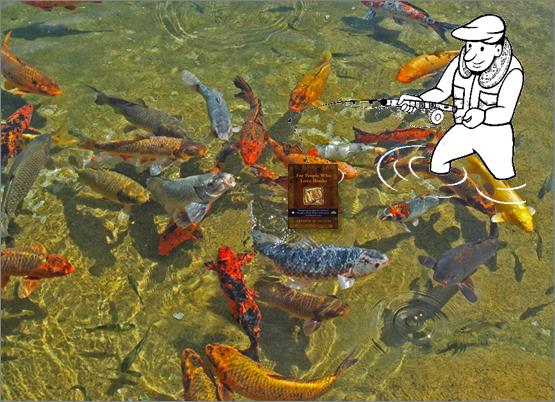 Writers feed fish