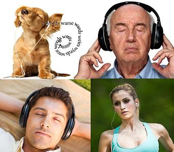 Audio books people