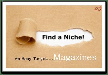 Niche_book_marketing